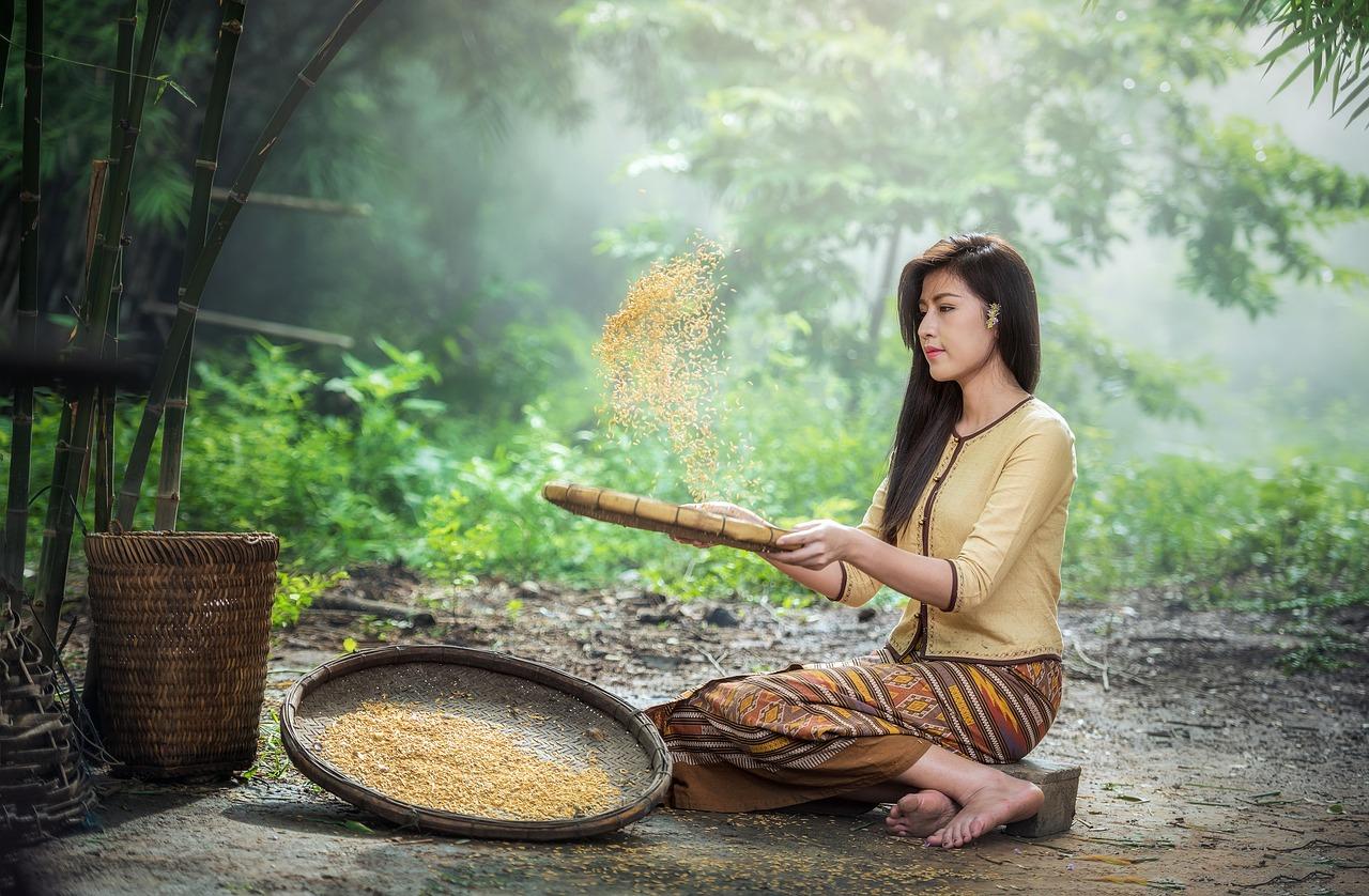 Frau die mit einem Sieb Kichererbsen sortiert und daraus Mehl macht